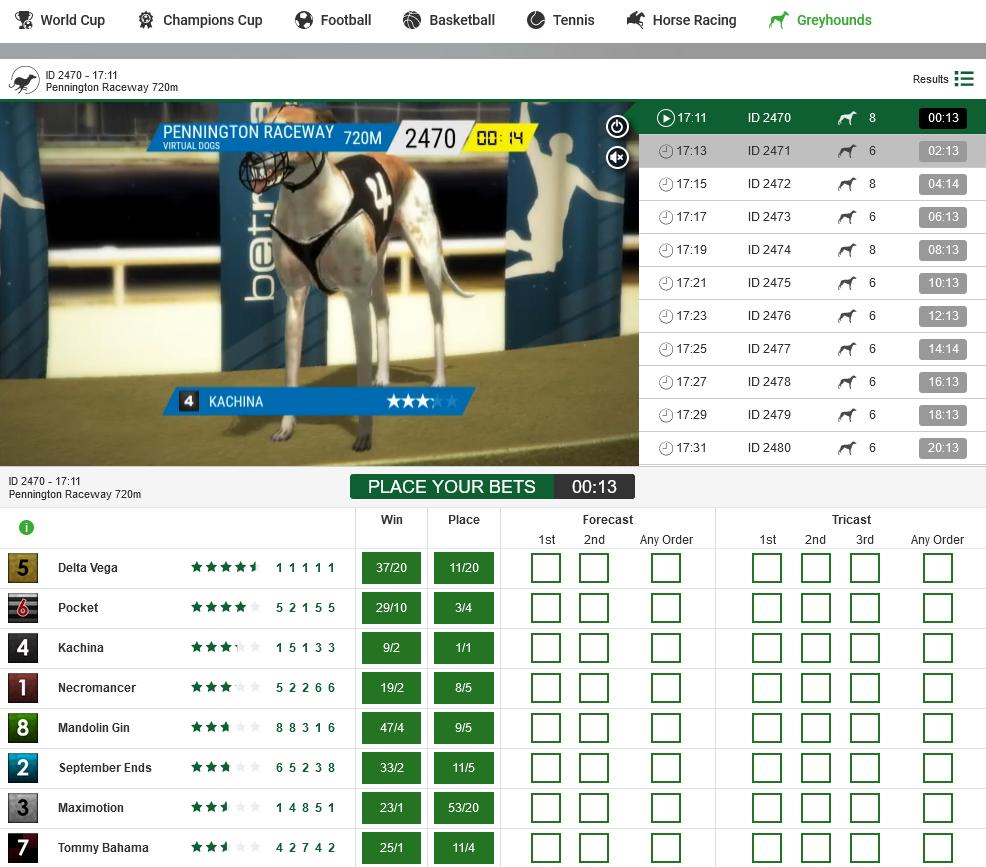 Bet on Virtual Greyhound Racing